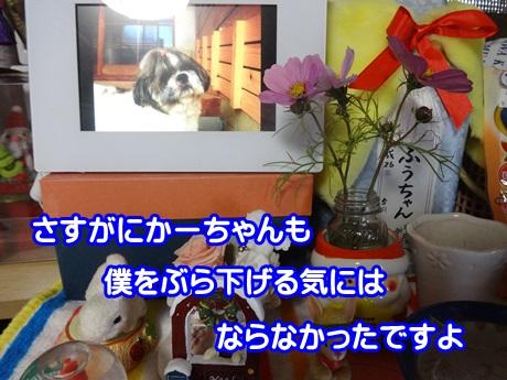 1208-10_2015120819322933d.jpg