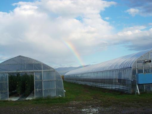 20150928_夕方の虹