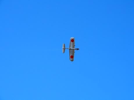 PA250959 日の丸飛行中