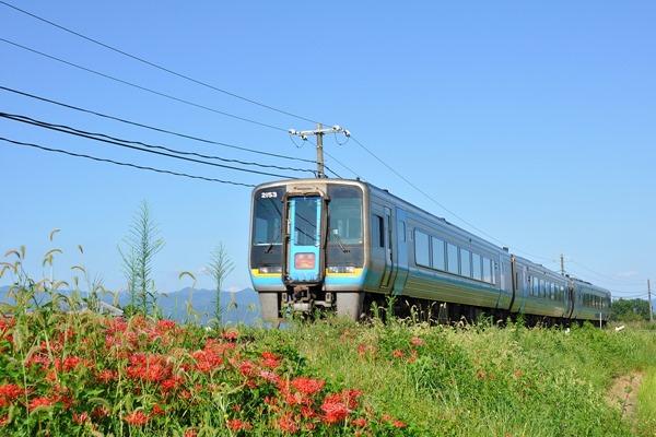 JR四国 特急「南風11号」