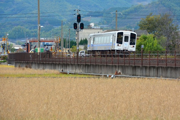 JR四国 普通(土佐くろしお鉄道の乗入れ車両) 土佐山田行