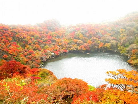 大船山(御池)~平治岳 051-001