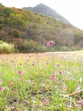 大船山(御池)~平治岳 012-001