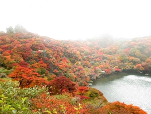 大船山(御池)~平治岳 050-001