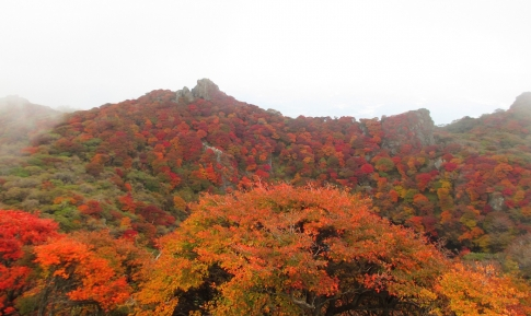 大船山(御池)~平治岳 055-001