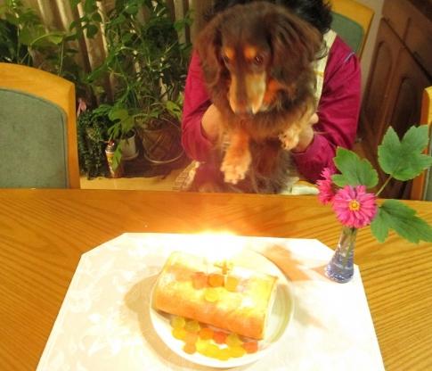 belleのお誕生日 004-001