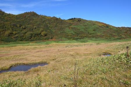 18黒沢池湿原