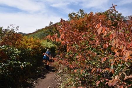 23茶臼山への登り