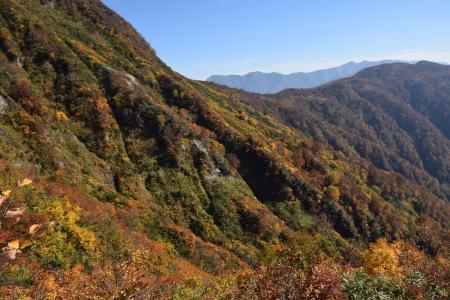 79-1阿寺山への稜線