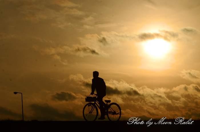 自転車を漕ぐ 愛媛県西条市古川 加茂川堤防