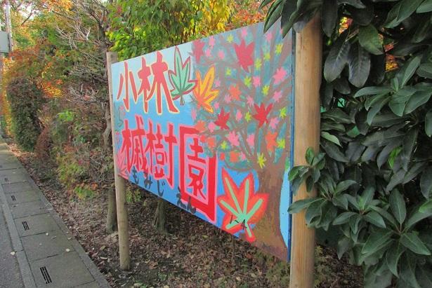 kobayashi-momizi151121-103.jpg