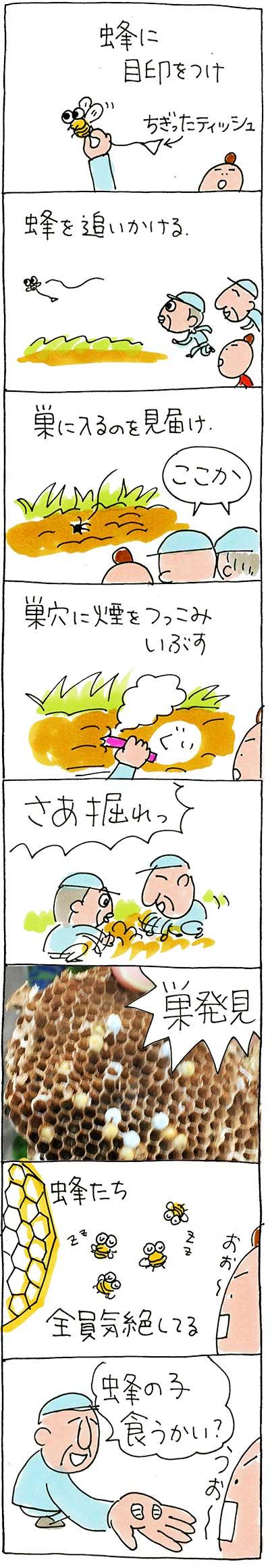農業体験151030_02