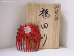 © 陽佳 2007「竜田川」DH000181.jpg