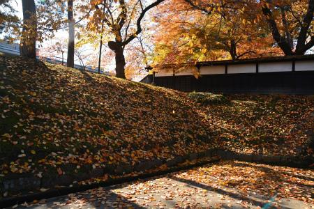 ブログ弘前公園3