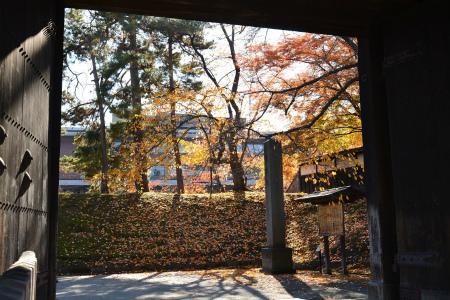 ブログ弘前公園5