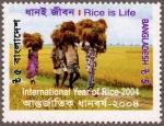 バングラデシュ・農業