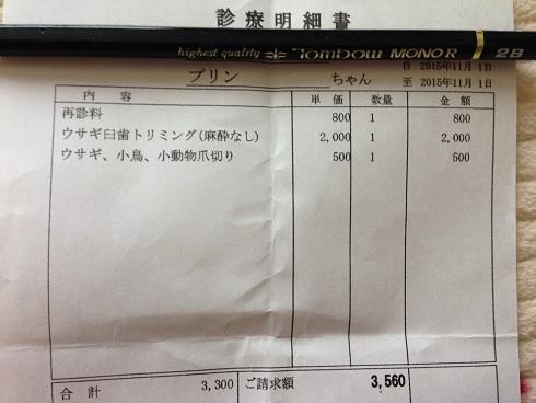 IMG_0746.治療費
