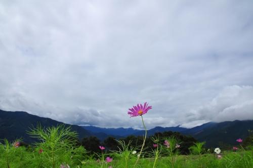 1翠波高原15.08.26