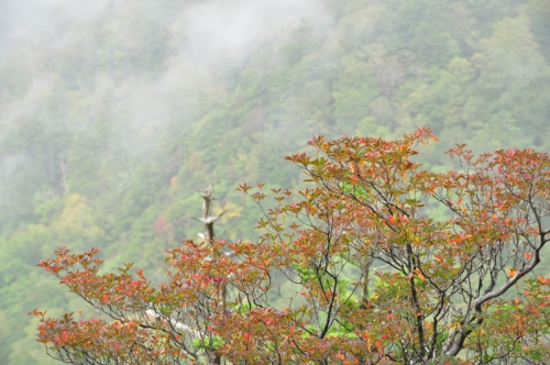 2石鎚山15.09.26