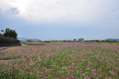 2見奈良15.09.30