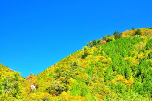 大川嶺151014 1