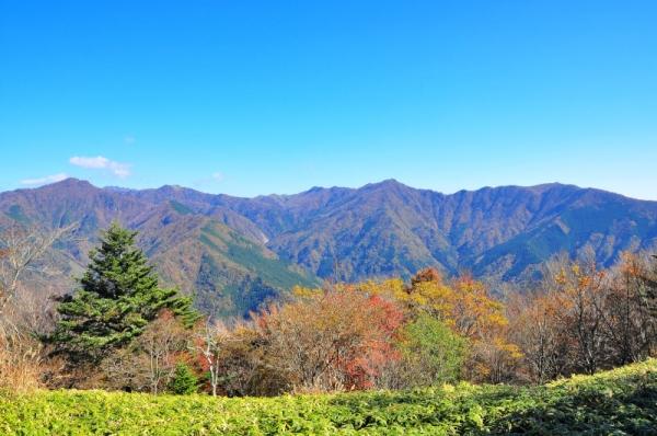 6気多山 八辻ノ峰15.11.03