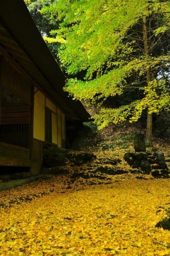 3三島神社15.11.09