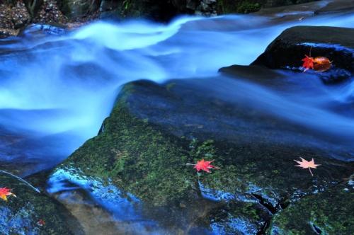 9白糸の滝15.11.20