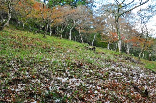1稲荷山15.11.27
