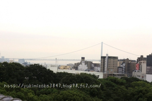 20150706001-29.jpg