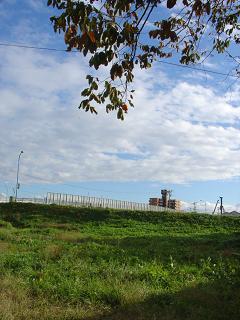 20051115-4.jpg
