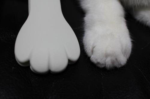 ブログNo.440(実験!口笛は嫌い?&猫グッズちらり)14