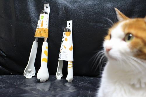 ブログNo.441(猫グッズ&お座りとお手をする猫)3