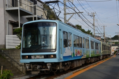 DSC_5807.jpg