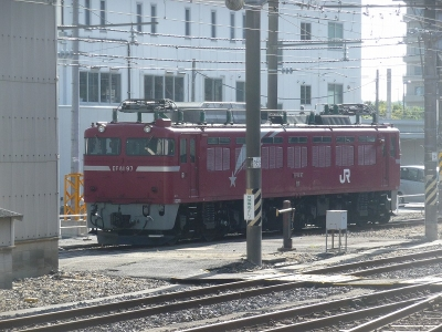 P1110353.jpg