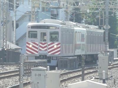 P1110492.jpg