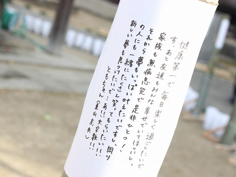 take02 (26)
