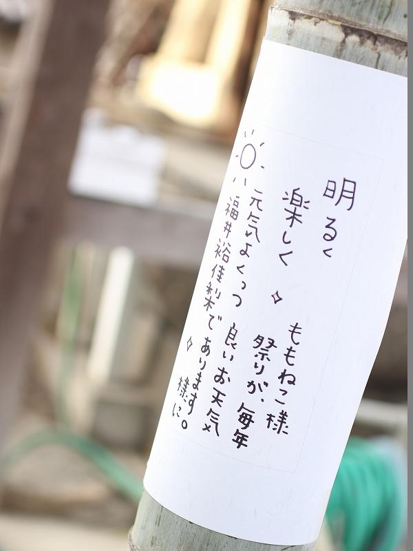 take02 (39)
