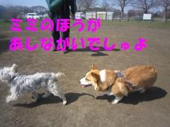 IMG_8297-1.jpg