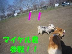 IMG_8298-1.jpg
