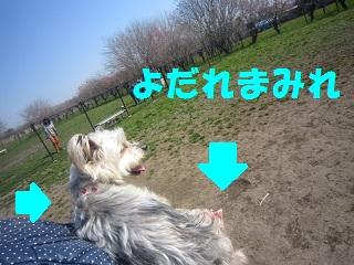IMG_8333-1.jpg