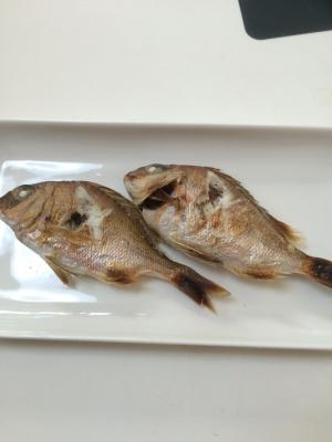 稚鯛の塩焼き