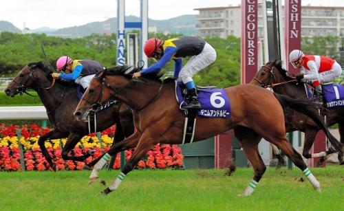 【競馬】デニムアンドルビーが右前屈腱炎を発症