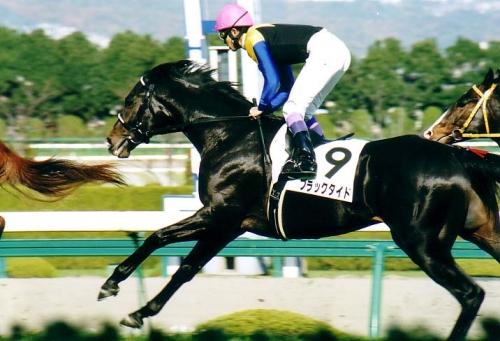 【競馬】ブラックタイドが194頭に種付けしてる件