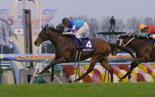 【競馬】カンパニー、種牡馬失格の烙印を押される