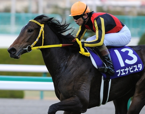 【競馬】ブエナビスタ以来夢中になれる馬が現れない