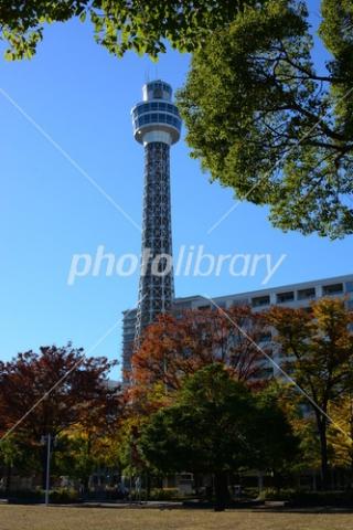 4037876 横浜マリンタワー