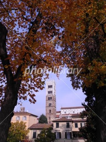 4037583 紅葉とサン・マルティーノ大聖堂の鐘楼