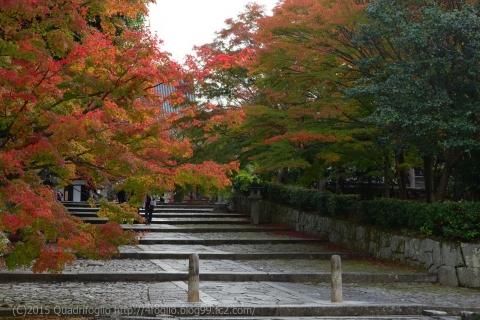 2015秋の京都_真如堂