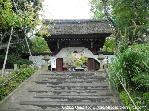 2015秋・深大寺